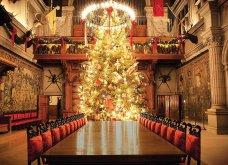 Τα πιο ωραία χριστουγεννιάτικα δέντρα στις Η.ΠΑ. - Εκεί που ξοδεύουν 3 δισ. δολάρια το χρόνο για έλατο! (φώτο)  - Κυρίως Φωτογραφία - Gallery - Video 29