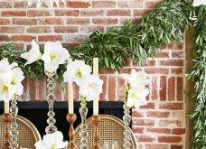 Χριστούγεννα: 40 εκπληκτικές ιδέες για το πιο γιορτινό τραπέζι! Βαλτέ χρώματα& πολύ φαντασία - Φώτο   - Κυρίως Φωτογραφία - Gallery - Video 6