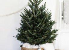 25 εκπληκτικές ιδέες για μικρά δένδρα Χριστουγέννων για σπίτια που δεν έχουν πολύ χώρο - Φώτο - Κυρίως Φωτογραφία - Gallery - Video 6