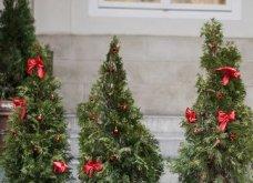 25 εκπληκτικές ιδέες για μικρά δένδρα Χριστουγέννων για σπίτια που δεν έχουν πολύ χώρο - Φώτο - Κυρίως Φωτογραφία - Gallery - Video 12