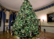 Η Melania Trump μας εύχεται... καλά Χριστούγεννα: Στόλισε τον Λευκό Οίκο με χιλιάδες δένδρα, φωτάκια & πολλά λουλούδια - Φώτο & Βίντεο  - Κυρίως Φωτογραφία - Gallery - Video 2
