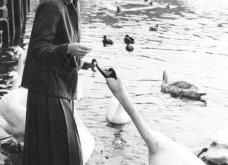 "Vintage beauty pics: Όταν η όμορφη & διάσημη ηθοποιός Τζιν Σίμπεργκ έκοψε ""αγορίστικα"" τα μαλλιά της & έκανε το ""αλά γκαρσόν"" κούρεμα παγκόσμια μόδα (φώτο)  - Κυρίως Φωτογραφία - Gallery - Video 15"
