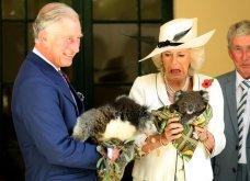 Σε εικόνες μια ολόκληρη δεκαετία της βασιλικής οικογένειας - Λίγο πριν η Μέγκαν βγει από το κάδρο (φώτο) - Κυρίως Φωτογραφία - Gallery - Video 9