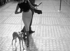 Κλικς όλο χάρη και φινέτσα: Όταν τα μοντέλα του 1950 πόζαραν για τον φωτογραφικό φακό του William Helburn (φωτό) - Κυρίως Φωτογραφία - Gallery - Video 9