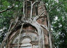 Όταν η φύση νικά τον πολιτισμό: 20 εντυπωσιακά κλις - Το χωριό που χάθηκε κάτω από τα φυτά, το πελώριο δέντρο που «κατάπιε» μια καμινάδα - Κυρίως Φωτογραφία - Gallery - Video 3