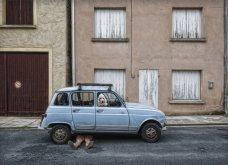 Street Photo Contest: Τα καλύτερα κλικς - Όταν οι φωτογράφοι αποθανατίζουν την καθημερινή ζωή και τρέλα - Κυρίως Φωτογραφία - Gallery - Video 8