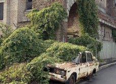 Όταν η φύση νικά τον πολιτισμό: 20 εντυπωσιακά κλις - Το χωριό που χάθηκε κάτω από τα φυτά, το πελώριο δέντρο που «κατάπιε» μια καμινάδα - Κυρίως Φωτογραφία - Gallery - Video 15