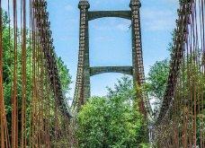 Όταν η φύση νικά τον πολιτισμό: 20 εντυπωσιακά κλις - Το χωριό που χάθηκε κάτω από τα φυτά, το πελώριο δέντρο που «κατάπιε» μια καμινάδα - Κυρίως Φωτογραφία - Gallery - Video 20