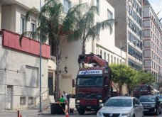 The Enforcer: Η Θεσσαλονίκη έγινε Μαϊάμι! Σπορ αμάξια & φοίνικες στην Εθνική Αμύνης, για την ταινία του Αντόνιο Μπαντέρας (φωτό & βίντεο) - Κυρίως Φωτογραφία - Gallery - Video 11