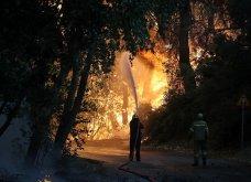 Μαίνεται η πυρκαγιά στην περιοχή της Βαρυμπόμπης - Κάηκαν σπίτια, εκκενώθηκαν Θρακομακεδόνες & Ολυμπιακό Χωριό - Οι φλόγες στρέφονται προς το Τατόι  - Κυρίως Φωτογραφία - Gallery - Video 13