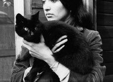 Aξιολάτρευτες Vintage Pics : Οι θρύλοι του ροκ & τα γατάκια τους - Ο Λένον - ο Μέρκιουρι - ο Ντίλαν & οι υπέροχοι φίλοι τους  - Κυρίως Φωτογραφία - Gallery - Video