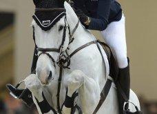 Παρολίγον μοιραία η πτώση της Αθηνάς Ωνάση από το άλογό της που σκοτώθηκε - Βίντεο και συγκλονιστικές φωτό από το τραγικό συμβάν της «χρυσής» κληρονόμου - Κυρίως Φωτογραφία - Gallery - Video 3