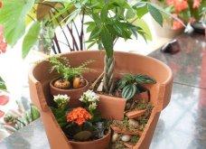 Φαντασία & μεράκι για μικρούς φανταστικούς κήπους μέσα σε σπασμένες γλαστρούλες - Κυρίως Φωτογραφία - Gallery - Video 11