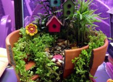 Φαντασία & μεράκι για μικρούς φανταστικούς κήπους μέσα σε σπασμένες γλαστρούλες - Κυρίως Φωτογραφία - Gallery - Video 4