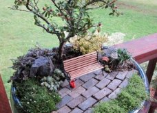 Φαντασία & μεράκι για μικρούς φανταστικούς κήπους μέσα σε σπασμένες γλαστρούλες - Κυρίως Φωτογραφία - Gallery - Video 5