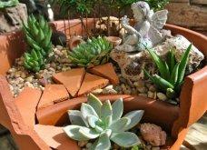 Φαντασία & μεράκι για μικρούς φανταστικούς κήπους μέσα σε σπασμένες γλαστρούλες - Κυρίως Φωτογραφία - Gallery - Video 9
