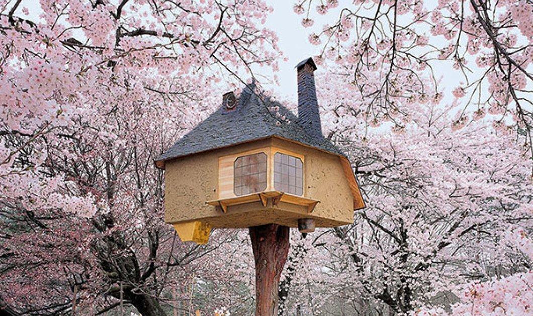 15 σπίτια που μοιάζουν σαν να έχουν βγει από παραμύθι - Mικρά & μεγάλα παιδιά θα τα λατρέψετε - Κυρίως Φωτογραφία - Gallery - Video