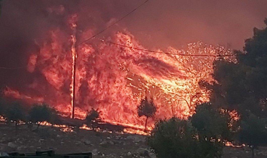Δύσκολη νύχτα για τη Ζάκυνθο - Ανεξέλεγκτη πυρκαγιά καίει το νησί - Εκκενώθηκαν χωριά (φώτο-βίντεο) - Κυρίως Φωτογραφία - Gallery - Video