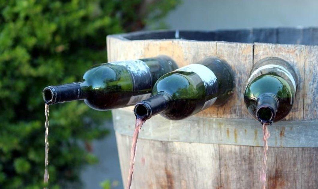 Παγκόσμια Ημέρα Ξινόμαυρου η 1η Νοεμβρίου! - Η Made in Greece ποικιλία κρασιού μπαίνει στον παγκόσμιο χάρτη - Κυρίως Φωτογραφία - Gallery - Video