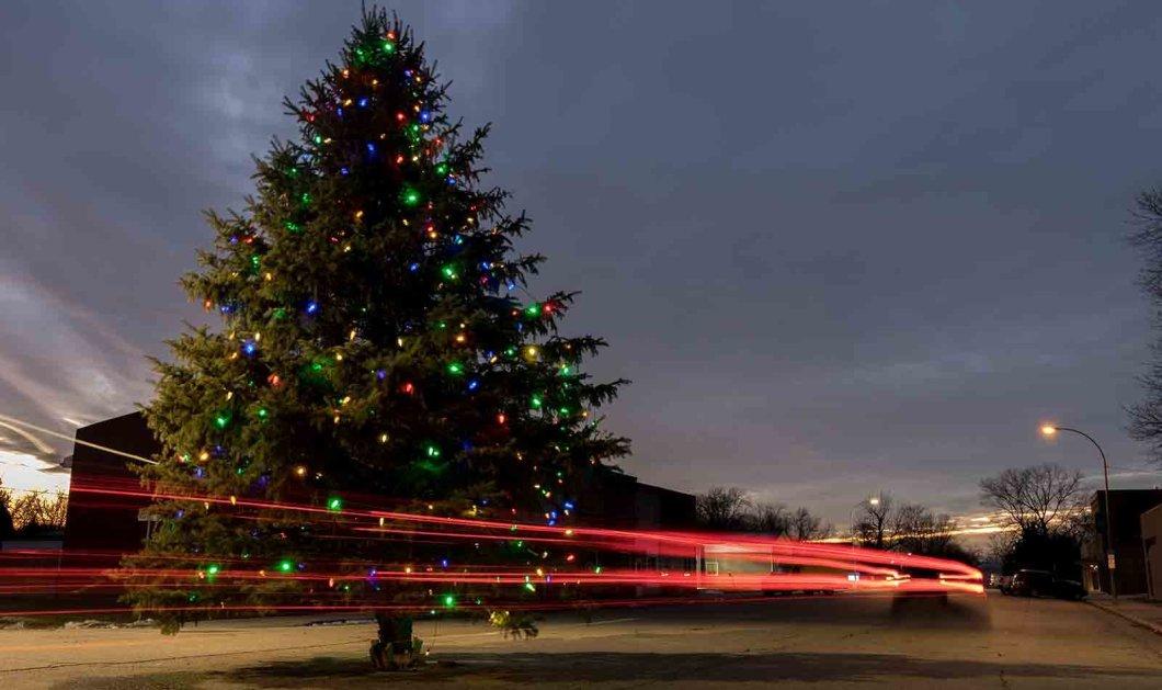 Τα πιο ωραία χριστουγεννιάτικα δέντρα στις Η.ΠΑ. - Εκεί που ξοδεύουν 3 δισ. δολάρια το χρόνο για έλατο! (φώτο)  - Κυρίως Φωτογραφία - Gallery - Video