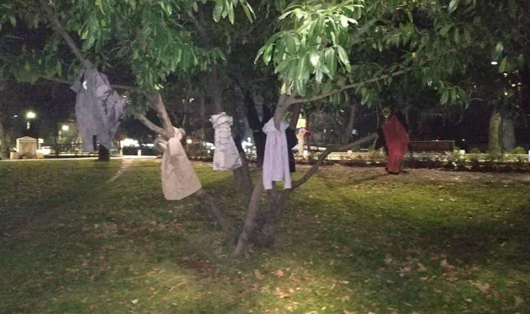 "Good News: Τα δέντρα της Έδεσσας θα ""ντυθούν"" με μπουφάν & ζακέτες - Χριστουγεννιάτικο δώρο σε όσους έχουν ανάγκη (φώτο) - Κυρίως Φωτογραφία - Gallery - Video"