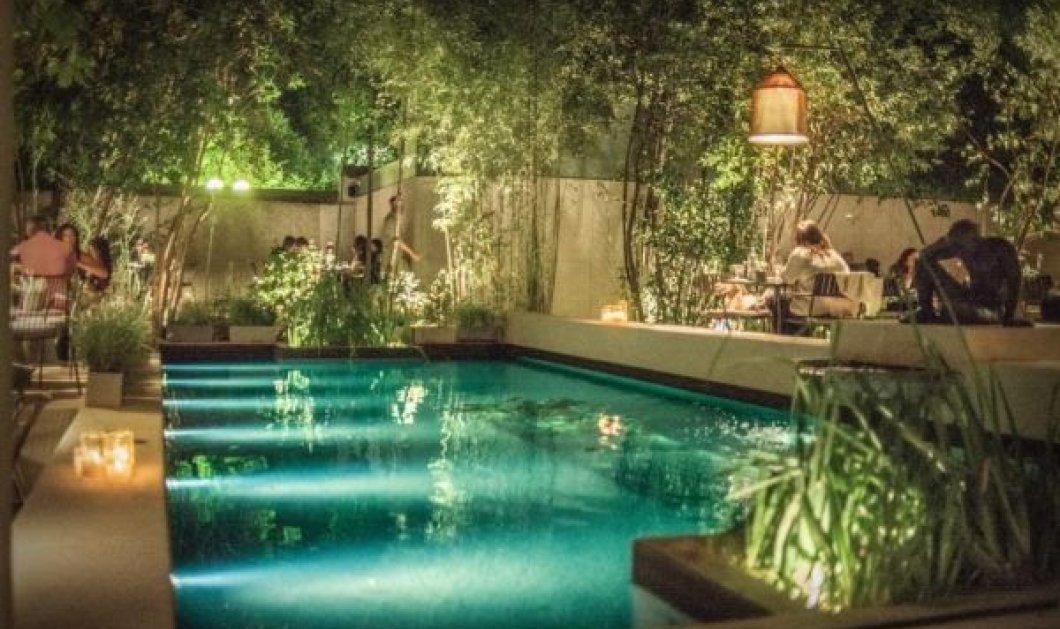 Η όαση του καλοκαιριού - NATU: Tο νέο Εστιατόριο- Café στον κήπο του Μουσείου Γουλανδρή Φυσικής Ιστορίας με σεφ τον Δημήτρη Σκαρμούτσο - Κυρίως Φωτογραφία - Gallery - Video