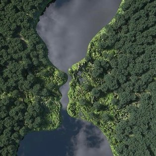 Φωτό ημέρας: Μια εικόνα από ψηλά που... συγκινεί – Η ομορφιά του δάσους/ Photo: Instagram – @chadknight  - Κυρίως Φωτογραφία - Gallery - Video