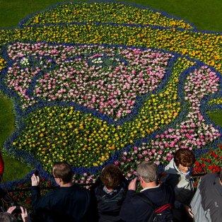 22/4/2015 - Το έργο τέχνης από λουλούδια με το πρόσωπο του Vincent van Gogh στην Ολλανδία προσελκύει καθημερινά χιλιάδες κόσμο! Picture: AP/Peter Dejong - Κυρίως Φωτογραφία - Gallery - Video