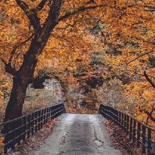 Αρίστη: Ένα πανέμορφο κεφαλοχώρι στο δυτικό Ζαγόρι σε χρώματα φθινοπωρινά – Η φωτογραφία της ημέρας (Φωτό:  @greecelover_gr) [Δείτε περισσότερα στο madeingreece.news] - Κυρίως Φωτογραφία - Gallery - Video