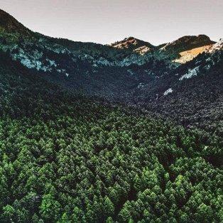 Καλάβρυτα: Μία εντυπωσιακή λήψη για ένα τόπο που αγκαλιάζει η φύση - Φώτο: @peloponnese_gr [Δείτε περισσότερα στο madeingreece.news]  - Κυρίως Φωτογραφία - Gallery - Video