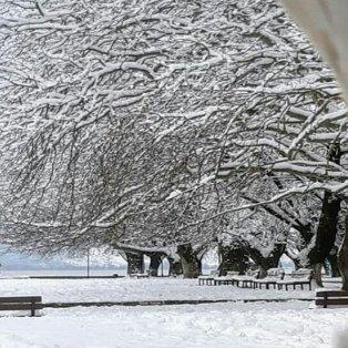 Καταπληκτική λήψη από τα χιονισμένα Ιωάννινα – Μαγεία! Φώτο: @efily1969 [Δείτε περισσότερα στο madeingreece.news]   - Κυρίως Φωτογραφία - Gallery - Video