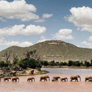 Φωτογραφία ημέρας: Η συγκλονιστική εικόνα της Doutzen Kroes για την Παγκόσμια Ημέρα του Ελέφαντα - Κυρίως Φωτογραφία - Gallery - Video