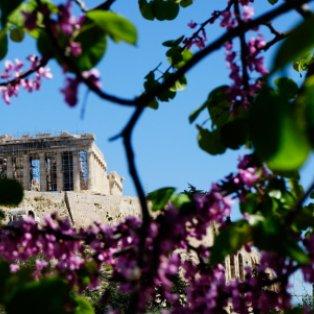 Οι πασχαλιές άνθισαν και στην Ακρόπολη – Καλή Ανάσταση/ Photo: EUROKINISSI - ΚΟΝΤΑΡΙΝΗΣ ΓΙΩΡΓΟΣ  - Κυρίως Φωτογραφία - Gallery - Video