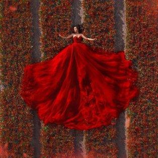 Φώτο ημέρας: Μέσα στα κατακόκκινα, ανθισμένα λιβάδια - Ένα απίθανο κλικ από drone/@artphotoproject - Κυρίως Φωτογραφία - Gallery - Video