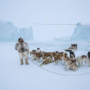 Ένας Εσκιμώος στη Γροιλανδία, το έλκηθρο και τα σκυλιά του (Φωτό: National Geographic / Φωτογράφος: Paul Nicklen) - Κυρίως Φωτογραφία - Gallery - Video