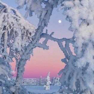 Φώτο ημέρας: Μαγεύει το παγωμένο φεγγάρι/photo @thomaskast1/Instagram - Κυρίως Φωτογραφία - Gallery - Video