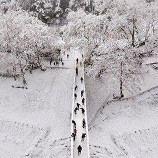 Η χιονισμένη και παγωμένη Κεντρική Ελλάδα «κόβει» την ανάσα (Φωτό: @spathumpa) - Κυρίως Φωτογραφία - Gallery - Video