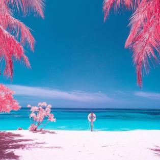 Φωτό Ημέρας ο ροζ, επίγειος παράδεισος σε παραλία στις Μαλδίβες - Κυρίως Φωτογραφία - Gallery - Video