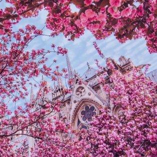 Φώτο ημέρας: Άνοιξη του ονείρου στο Παρίσι με παραμυθένια κλικς της Kristina Makeeva - Κυρίως Φωτογραφία - Gallery - Video