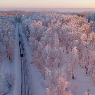 Ηλιοβασίλεμα στη Σιβηρία - Φωτογραφία: REUTERS / ILYA NAYMUSHIN - Κυρίως Φωτογραφία - Gallery - Video