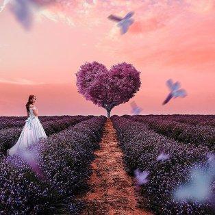"""Φωτό ημέρας η """"πριγκίπισσα"""" και το μωβ δέντρο σε σχήμα καρδιάς @art_siroj - Κυρίως Φωτογραφία - Gallery - Video"""