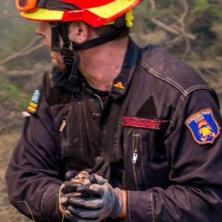 Συγκινητική στιγμή με τον Πυροσβέστη να σώζει τα πουλάκια μέσα στις χούφτες του - Φωτογραφία: Σταύρος Χαμπάκης - Κυρίως Φωτογραφία - Gallery - Video