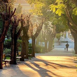 Φώτο ημέρας: Στην Αθήνα μυρίζει ήδη Άνοιξη/@katerinakatopis - Κυρίως Φωτογραφία - Gallery - Video
