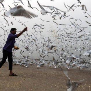 Το παιχνίδι είναι πάντα υπέροχο ανεξαρτήτου ηλικίας και στην παραλία του Μουμπάι - Φωτογραφία: REUTERS / DANISH SIDDIQUI - Κυρίως Φωτογραφία - Gallery - Video