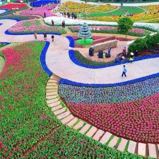 Επισκέπτες στον πανέμορφο κήπο της πόλης Chengdu στην Κίνα / Φωτογραφία: Xinhua/Barcroft Images - Κυρίως Φωτογραφία - Gallery - Video