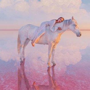 Φώτο ημέρας: Η απόλυτη γαλήνη, ένα «μαγικό» άλογο που σε ταξιδεύει στον κόσμο του ονείρου/@hobopeeba - Κυρίως Φωτογραφία - Gallery - Video