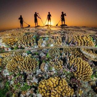 Συναρπαστική Φωτό Ημέρας Ocean Photography Awards - Ηλιοβασίλεμα στην Τόνγκα / Grant Thomas  - Κυρίως Φωτογραφία - Gallery - Video