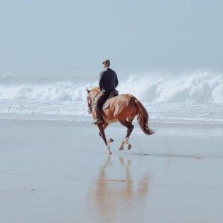Φώτο ημέρας: Η απόλυτη γαλήνη, μια βόλτα με το άλογο στην θάλασσα/@martanferreira - Κυρίως Φωτογραφία - Gallery - Video