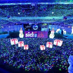 08/12/2014 - 1,2 εκ. λαμπιόνα LED, 120 χλμ καλώδια, 3.865 τ.μ για την χριστουγεννιάτικη διακόσμηση που μπήκε στο ρεκόρ Γκίνες!  - Κυρίως Φωτογραφία - Gallery - Video