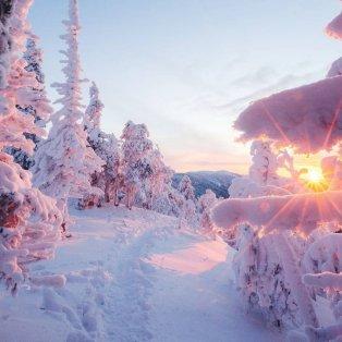 Φωτό ημέρας: Ένα μαγευτικό χιονισμένο τοπίο στη Φινλανδία / Photo: Instagram - @niiloi - Κυρίως Φωτογραφία - Gallery - Video